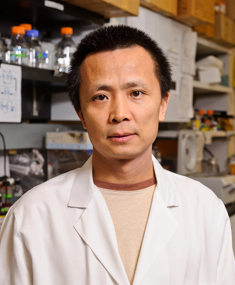 Photo of Yi Lai, PhD