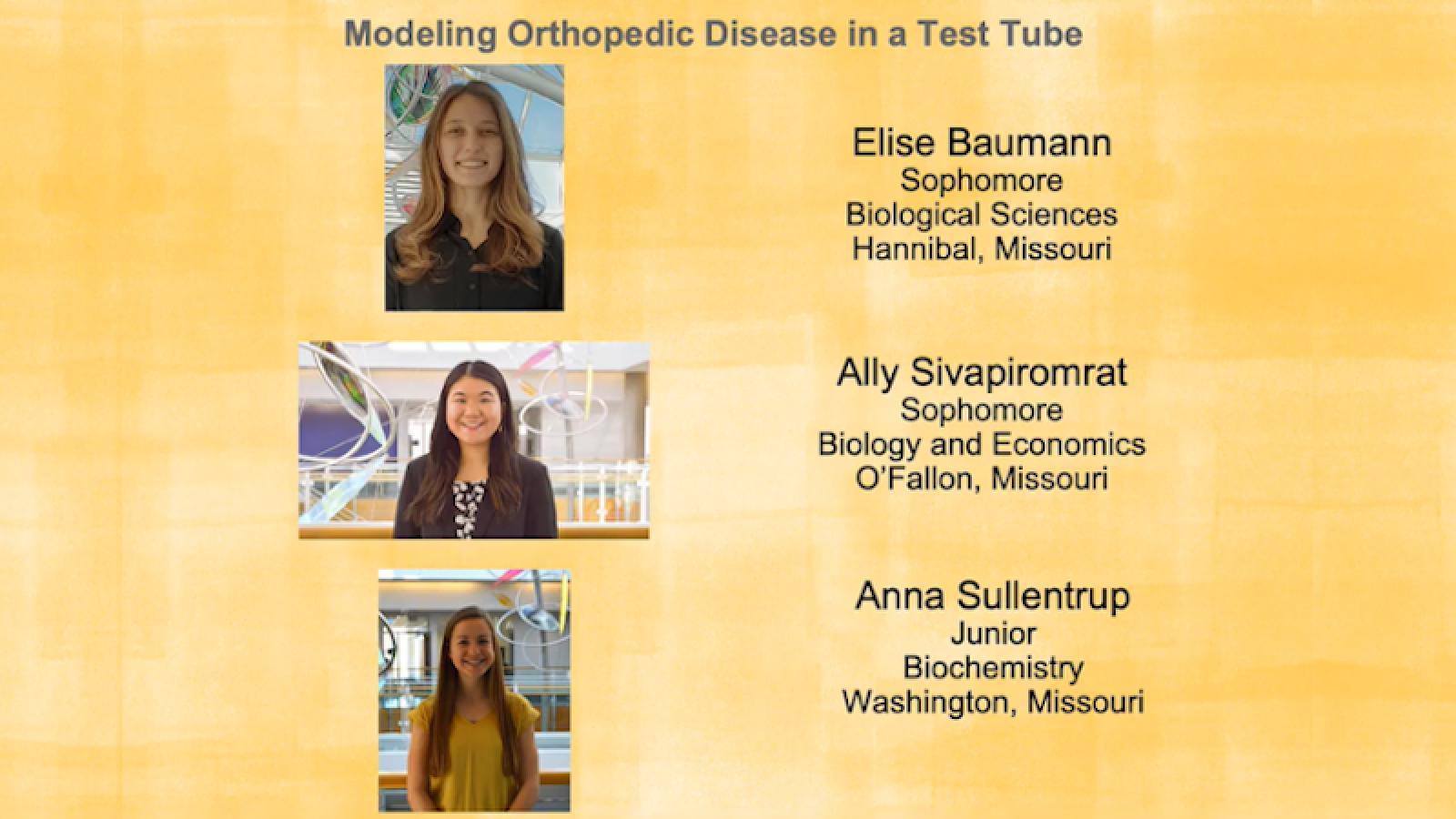 TLRO undergraduates Elise Baumann, Ally Sivapiromat, and Anna Sullentrup