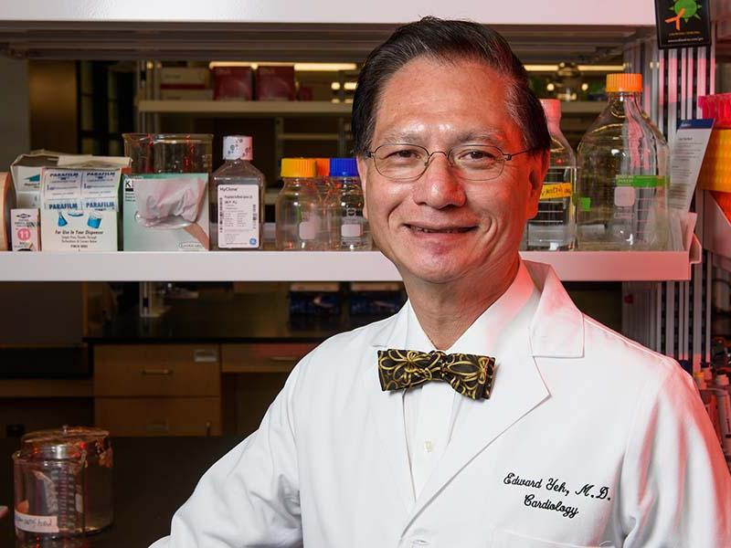 MU School of Medicine researcher uncovers clue to as to how disease  processes develop