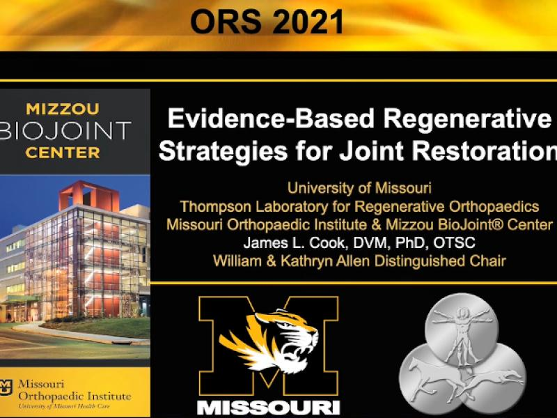 """Evidence-Based Regeneration Strategies for Joint Replacement."" slide graphic"