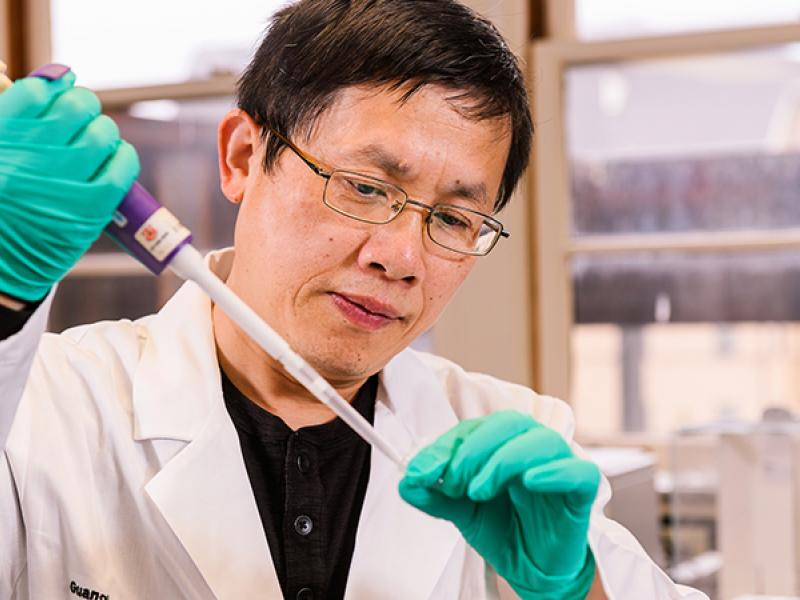Guanghong Jia, PhD, an assistant professor at the University of Missouri School of Medicine
